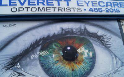 Professional Vision Group Leverett-400x250