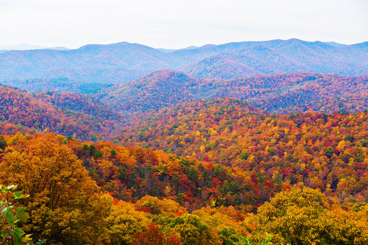 """SEEING IS BELIEVING "" this wonderful opportunity to live in ""God's little piece of Heaven "" Franklin, NC"